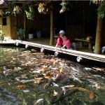 Lesehan Waroeng Bamboe Batu