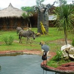 Mengisi Liburan Di Secret Zoo – Museum Satwa