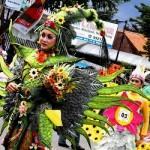 Malang Flower Carnival ( MFC ) 2012