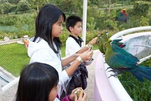 Secret Zoo | Museum Satwa