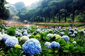 Taman Wisata Selecta Batu Malang MG