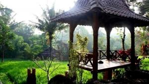 Padi City Hotel Resort