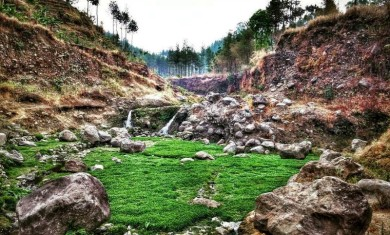 Ledok Ombo Malang MG