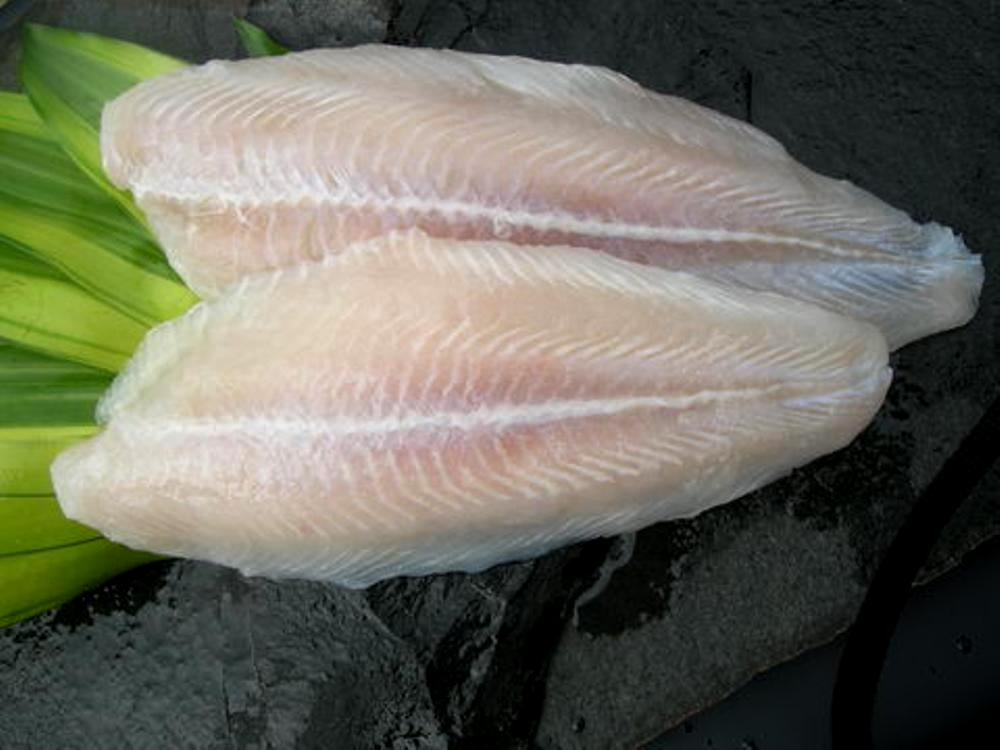 Supplier Ikan Dori Segar di Jawa Timur