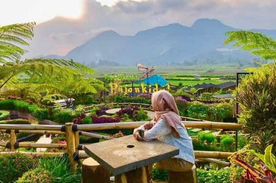 Cafe Sawah – Malang Guidance